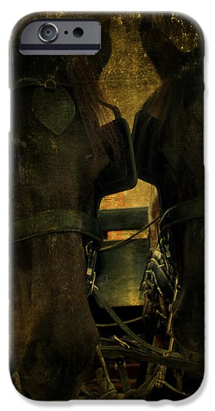 Spanish Carriage Horses iPhone Case by Lee Dos Santos