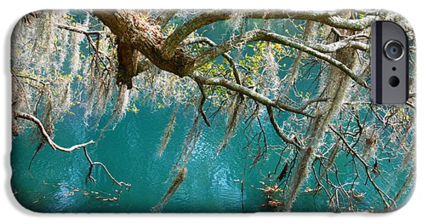 Emerald Green iPhone Cases - Spanish Moss and emerald green water iPhone Case by Susanne Van Hulst