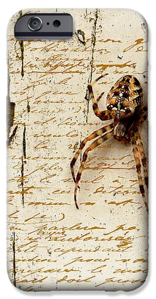 Spider Letter iPhone Case by Yvon van der Wijk