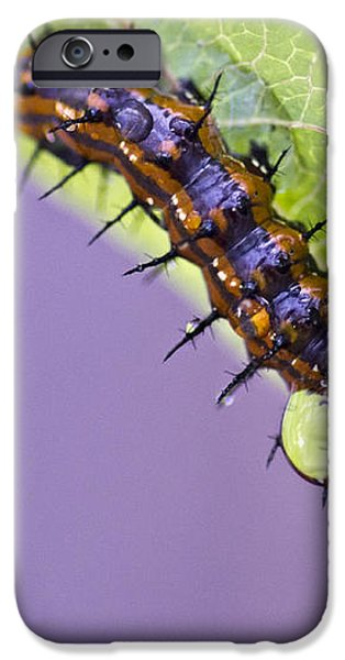 Spikes and Drops iPhone Case by Priya Ghose