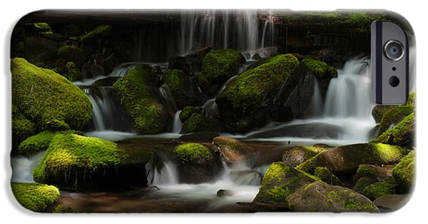 Rainforest iPhone Cases - Spotlights iPhone Case by Mike Reid