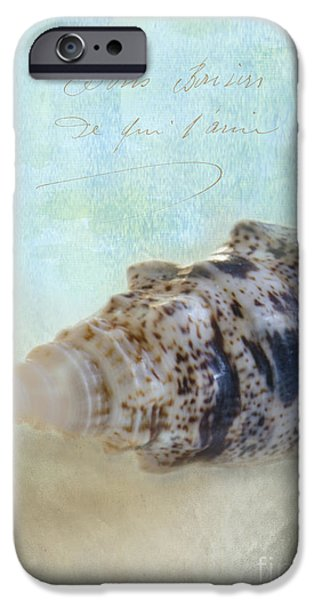 Spotted Auger Seashell iPhone Case by Betty LaRue