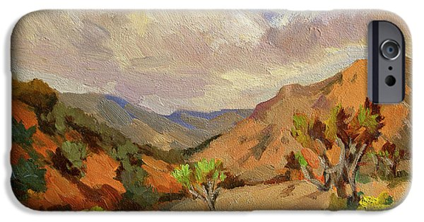 Spring iPhone Cases - Spring at Joshua Tree iPhone Case by Diane McClary
