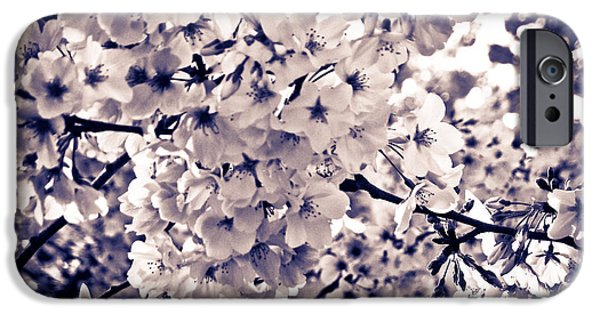 Blooming Pyrography iPhone Cases - Spring Blooms IV iPhone Case by Mira Dimitrijevic