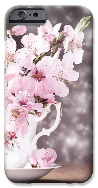 Cherry Blossoms Photographs iPhone Cases - Spring Blossom iPhone Case by Amanda And Christopher Elwell