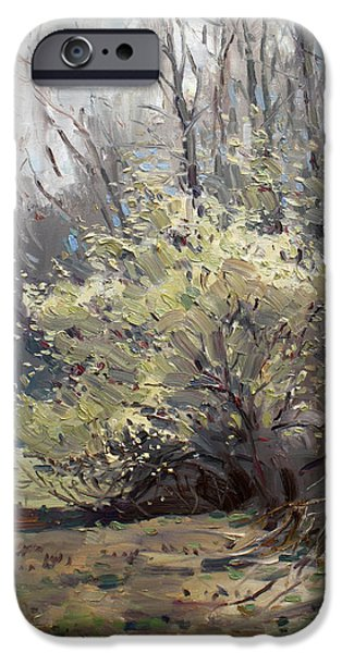 Royal Paintings iPhone Cases - Spring Blossom  iPhone Case by Ylli Haruni