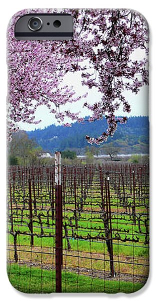 Spring Blossoms Near Calistoga iPhone Case by Charlene Mitchell