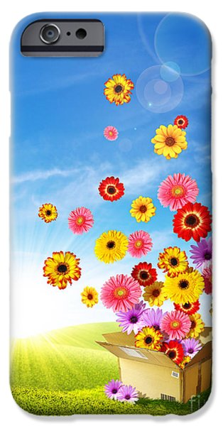 Spring Delivery 2 iPhone Case by Carlos Caetano