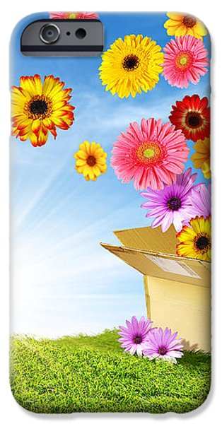 Spring Delivery iPhone Case by Carlos Caetano