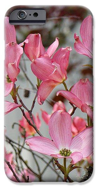 Spring Dogwood Tree Flowers art prints Pink Flowering Tree iPhone Case by Baslee Troutman