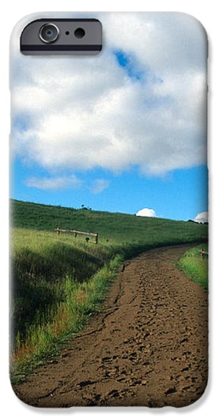 Spring Road 2 iPhone Case by Kathy Yates