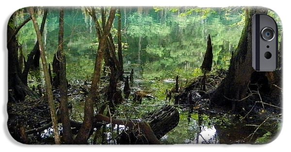 Chiefland iPhone Cases - Spring Swamp Reflection iPhone Case by Sheri McLeroy