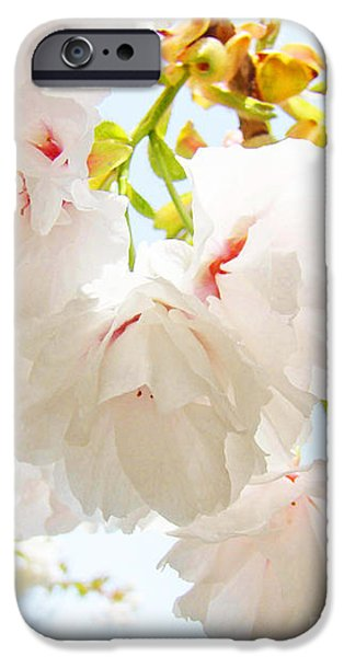 Spring White Pink Tree Flower Blossoms iPhone Case by Baslee Troutman