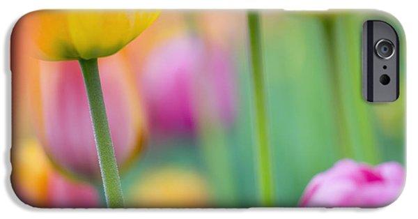 Decorativ iPhone Cases - Springtime iPhone Case by Silke Magino
