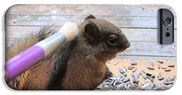 Redish iPhone Cases - Squirrel Gets A Massage iPhone Case by Kym Backland