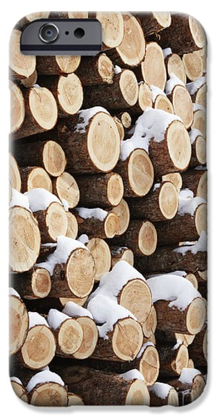 Wintertime iPhone Cases - Stack of Wood iPhone Case by Jeremy Woodhouse