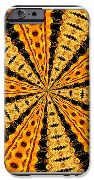 Stained Glass Kaleidoscope 37 iPhone Case by Rose Santuci-Sofranko