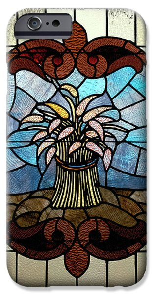 Stained Glass LC 20 iPhone Case by Thomas Woolworth
