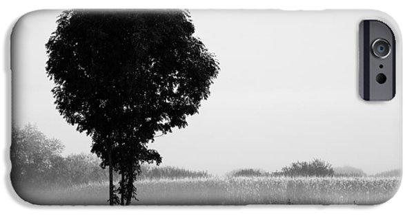 Meadow Photographs iPhone Cases - Standing out from the rest iPhone Case by Ian Middleton