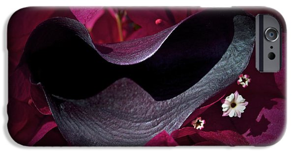 Calla Lilly iPhone Cases - Standing Out iPhone Case by Gwyn Newcombe