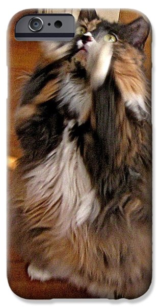 Applaud iPhone Cases - Standing Ovation iPhone Case by Byron Varvarigos