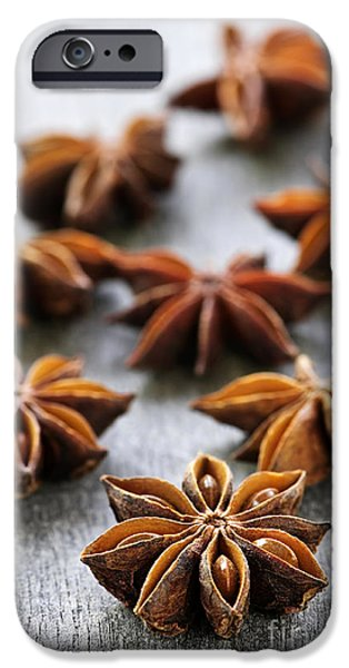 Star anise fruit and seeds iPhone Case by Elena Elisseeva