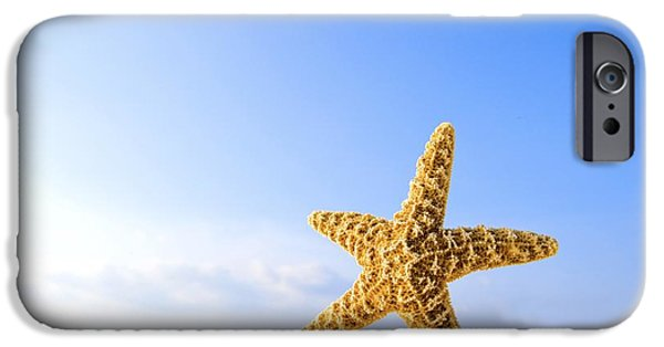 Starfish iPhone Cases - Starfish In Front Of The Ocean iPhone Case by Richard Wear