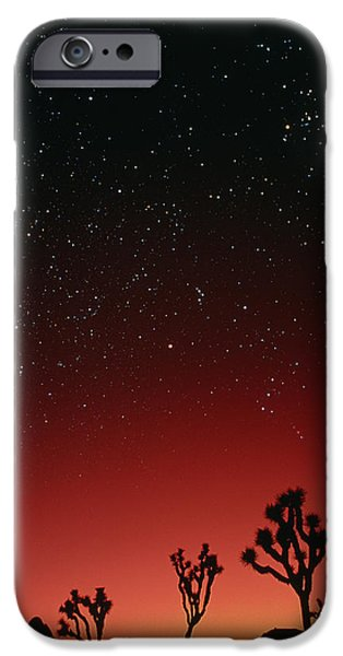 Starfield iPhone Cases - Starry Sky And Sunset Taken In Joshua Tree Park iPhone Case by David Nunuk