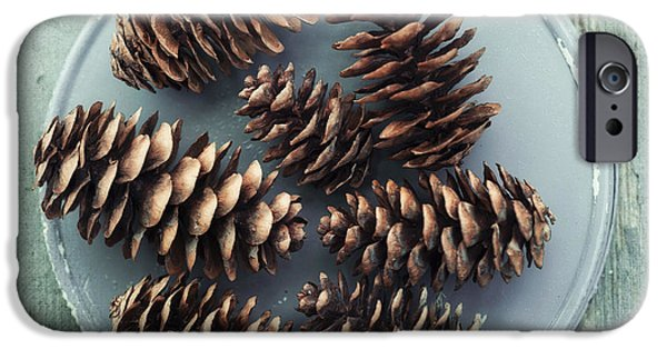 Still Life iPhone Cases - Stil Life With  Seven Pine Cones iPhone Case by Priska Wettstein
