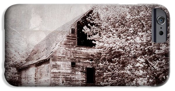 Shed Digital Art iPhone Cases - Still Here iPhone Case by Julie Hamilton