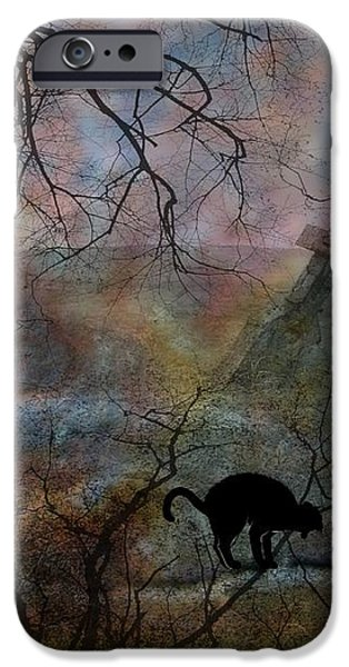 Still In There iPhone Case by Shirley Sirois