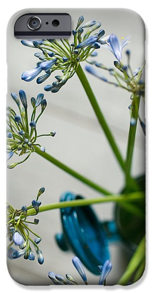 Sheets iPhone Cases - Still Life 01 iPhone Case by Nailia Schwarz