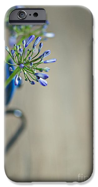 Sheets iPhone Cases - Still Life 02 iPhone Case by Nailia Schwarz