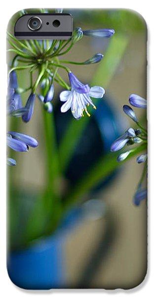 Still Life 03 iPhone Case by Nailia Schwarz