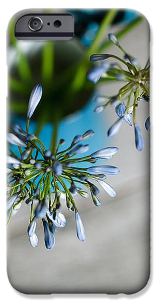 Still Life 04 iPhone Case by Nailia Schwarz