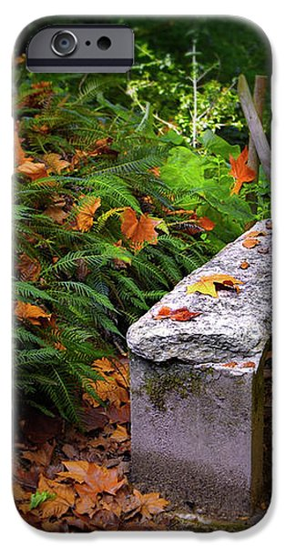 Stone Bench iPhone Case by Carlos Caetano