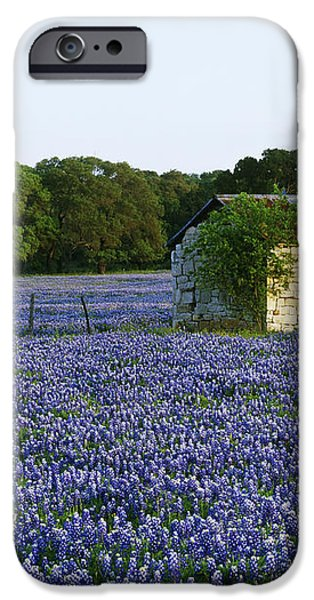 Stone Shed in Field of Bluebonnets iPhone Case by Jeremy Woodhouse