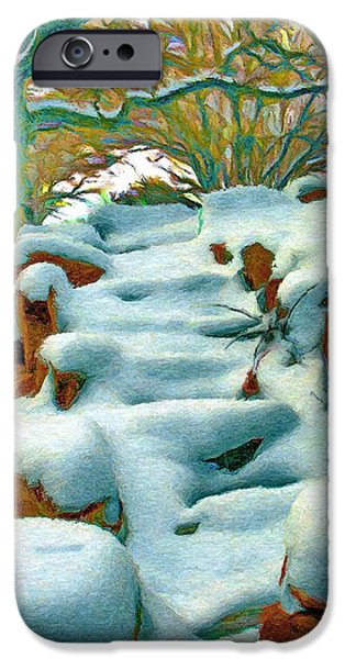 Stone Steps iPhone Cases - Stone Steps in Winter iPhone Case by Jeff Kolker