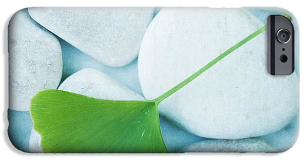 Calmness iPhone Cases - Stones And A Gingko Leaf iPhone Case by Priska Wettstein