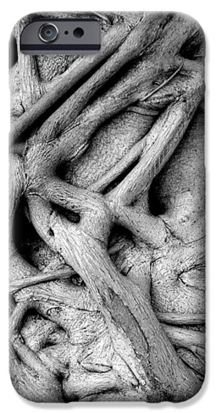 Tree Roots iPhone Cases - Stranglehold iPhone Case by Bruce J Robinson
