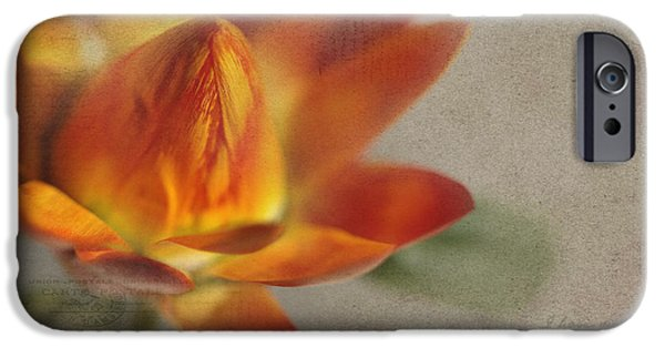 Texture Flower iPhone Cases - Straw Flower iPhone Case by Rebecca Cozart