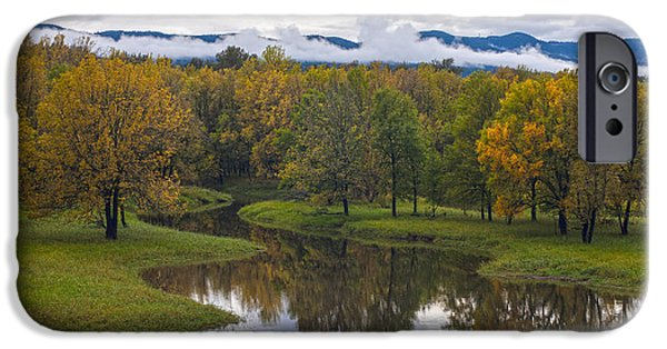 Creek iPhone Cases - Stream of Fall Colors iPhone Case by Mike Reid