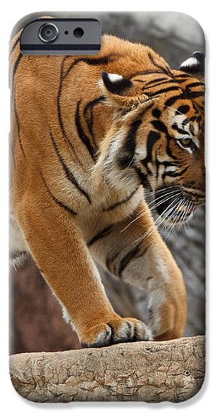 Stripes iPhone Case by Jonas Wingfield