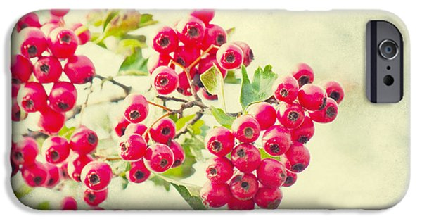 Berry Mixed Media iPhone Cases - Summer berries iPhone Case by Angela Doelling AD DESIGN Photo and PhotoArt
