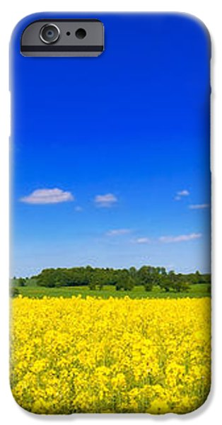 Summer Field iPhone Case by Amanda And Christopher Elwell