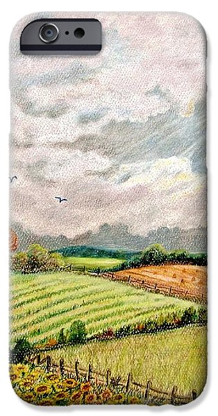 Summer Harvest iPhone Case by Marilyn Smith