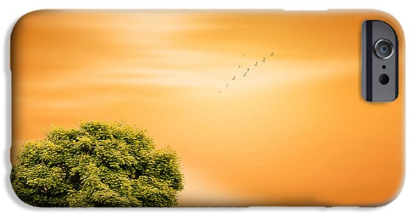 Lone Tree iPhone Cases - Summer iPhone Case by Lourry Legarde