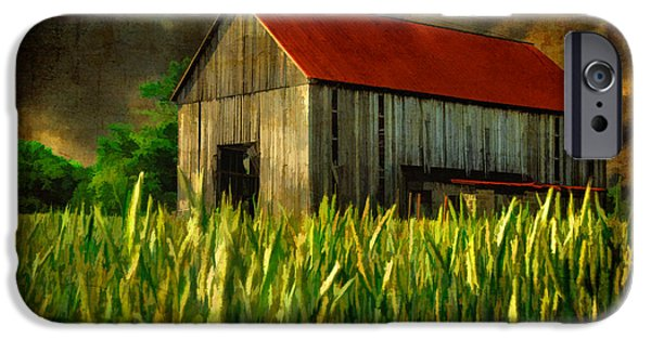 Red Roofed Barn iPhone Cases - Summer Storm iPhone Case by Lois Bryan