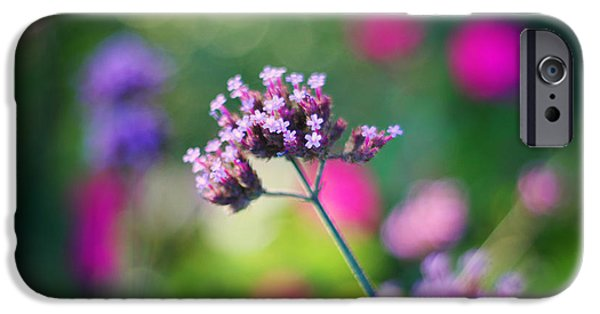 Fuchsia iPhone Cases - Summer Verbena iPhone Case by Amy Tyler