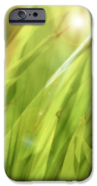 Summertime Green iPhone Case by Ann Powell